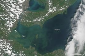 Satellite View of Lake Erie Algae Bloom