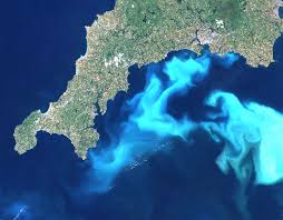 NASA Image: Great Britain Red-Tide